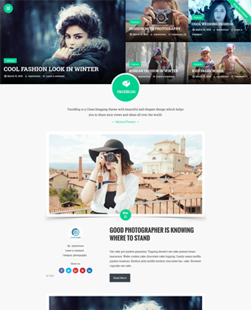 Free WordPress Theme FaceBlog - Clean & Elegant Blogging Theme