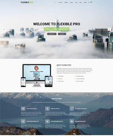 premium one page parallax WordPress