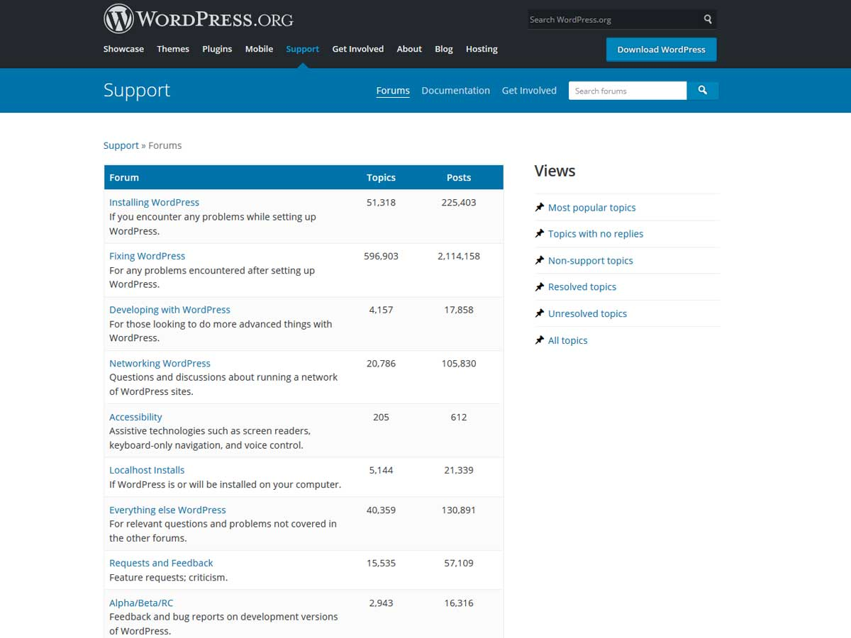 WordPress-support