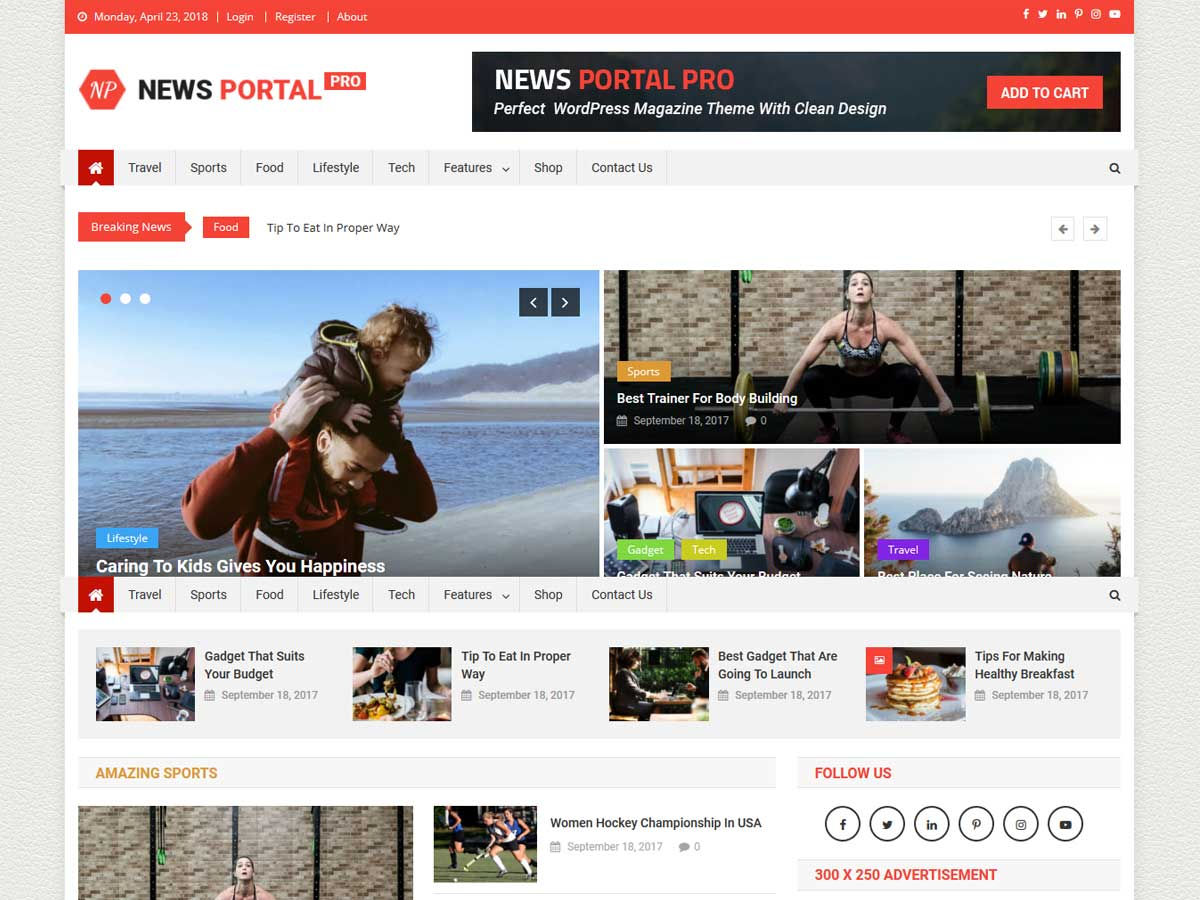 news-portal-pro-magazine-WordPress-theme