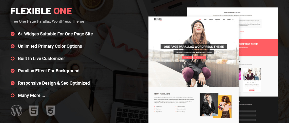 Free Parallax WordPress Theme - Mysterythemes com