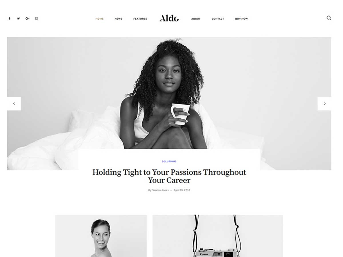 aldo-WordPress-theme