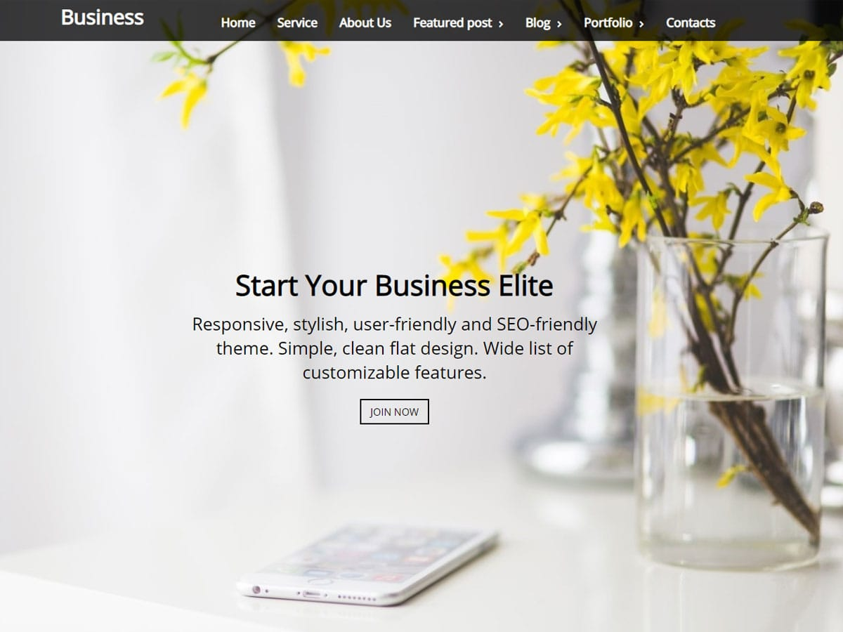Business-Elite-Theme