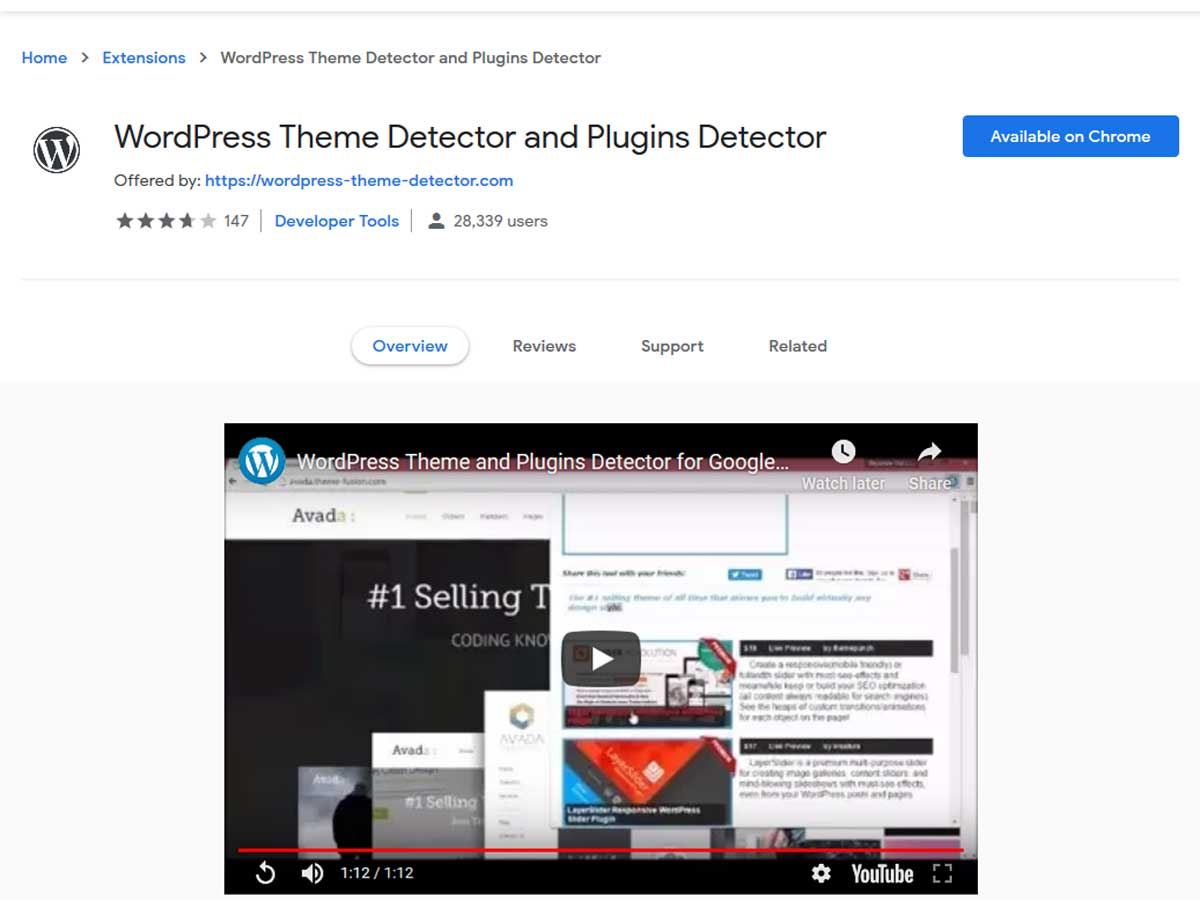 WordPress-theme-and-plugins-Detector